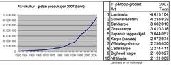 Global produksjon 2007 (Bodytext image)