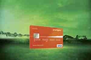 Pangea Ecocard