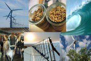 Renewable energy forum logo
