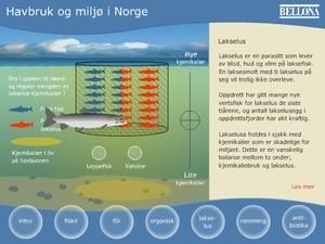 Havbruksweb illustrasjon (Ingress image)