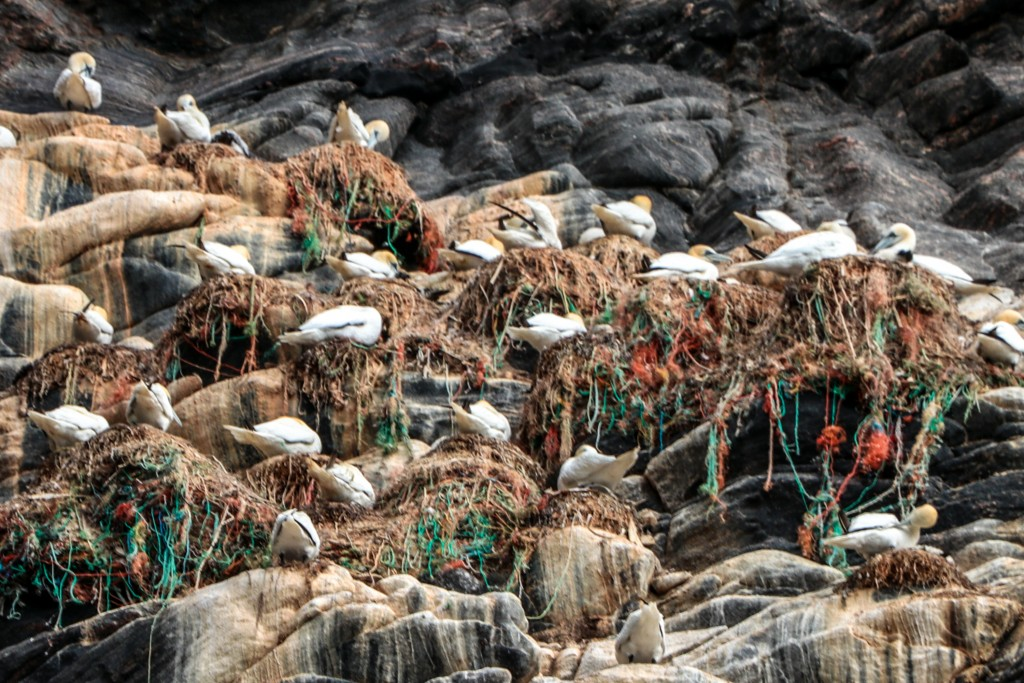 Fuglefjell Runde plast fra havet