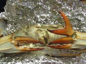 deformert krabbe