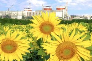 Ukraina nuclear atom