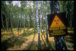 bodytextimage_atom-Russland-1-Mayk.jpg