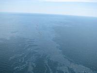 frontpageingressimage_800px-Spilled_oil_from_Deepwater_Horizon_2010-04-22_2.jpg