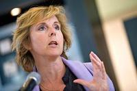 Hedegaard (Frontpage ingress image)