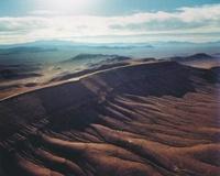 Yucca (Frontpage ingress image)