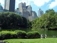 frontpageingressimage_newyork.jpg