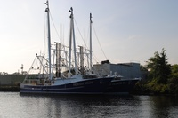 shrimp boats (Frontpage ingress image)