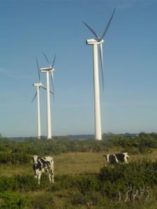 Näsudden wind park, Gotland, Sweden (Ingress image)