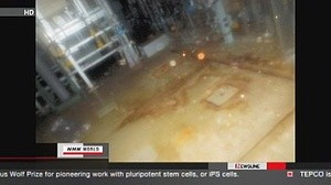 ingressimage_Fukushima_Reactor_-No_2.jpg