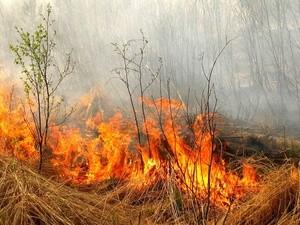 fireskuban (Ingress image)