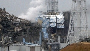 Fukushima_mark_1 (Ingress image)