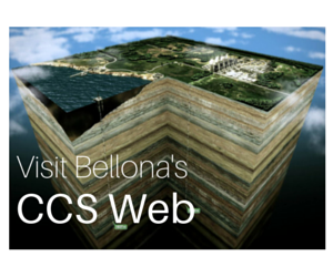 Bellona's CCS Web