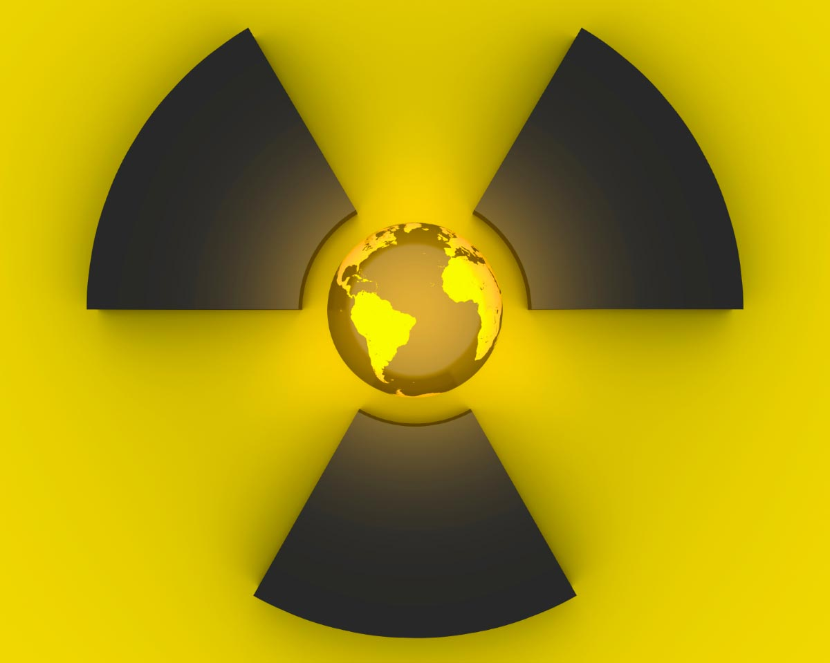 nuclear power the world at risk The risk of a serious cyber attack on nuclear power plants around the world is growing, says an influential report.
