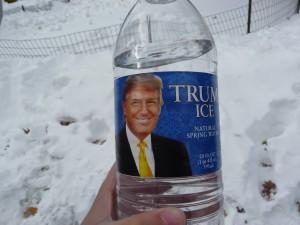 Trump_Ice_(5371360455)