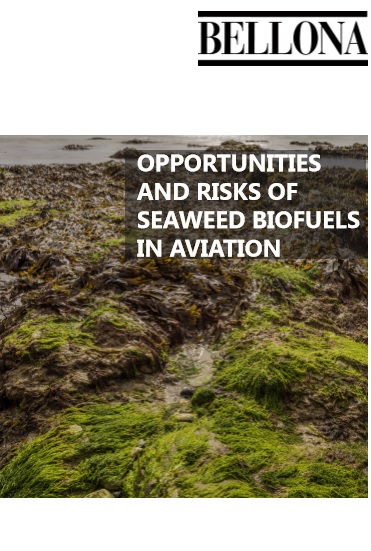 Opportunities and Risks of Seaweed Biofuels in Aviation