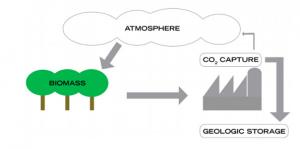Bio CCS