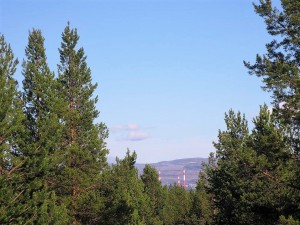 nikel_pollution_in_Norway