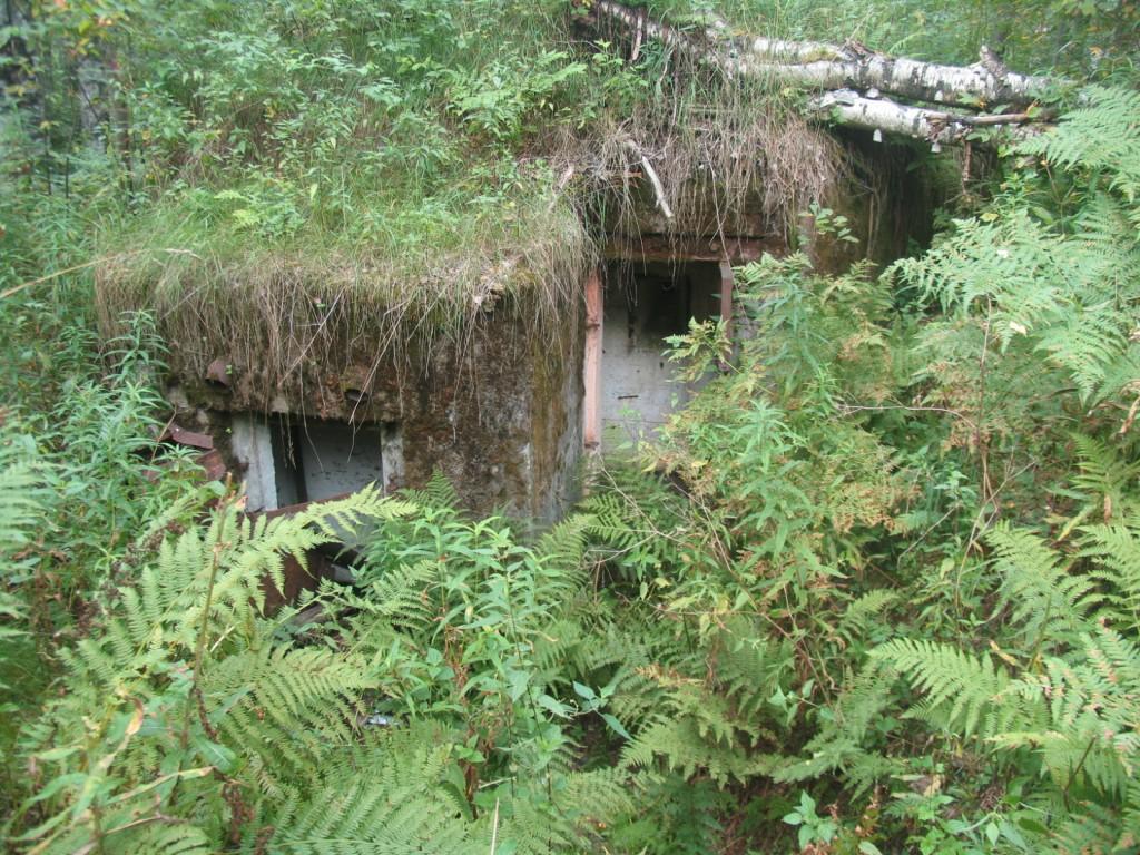 bunkers near st petersburg