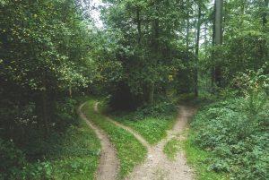 3 paths