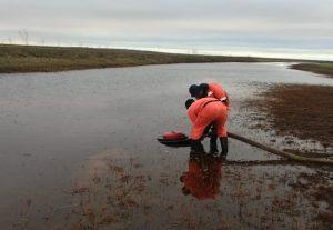 taymyr.spill2-morspas oil cleanup