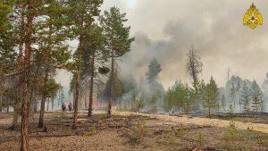 Forest fire yakutia