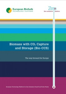 Biomass with CO2 Capture and Storage (Bio-CCS), the way forward for Europe
