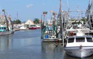 docked oyster and shrimp boats