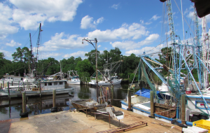 idle shrimp boats