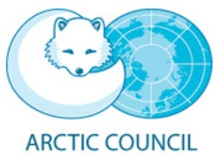 bodytextimage_arctic-council.jpg