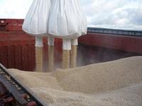 wood pellets bio biofuel пеллеты биотопливо