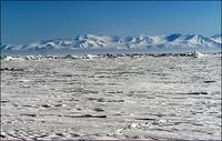 frontpageingressimage_arctic-1..jpg