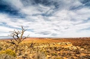 desert (Ingress image)