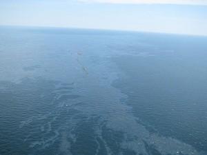 ingressimage_800px-Spilled_oil_from_Deepwater_Horizon_2010-04-22_2.jpg