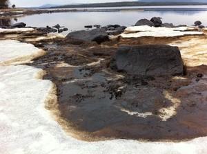 oil spill Kandalaksha