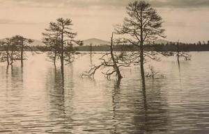 Lapland climate change