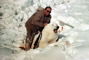polar bear hunting (Ingress image)