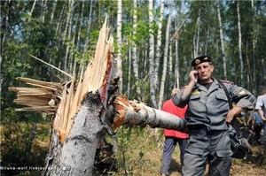khimki himki les forest химки лес (Ingress image)