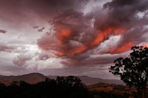 Solnedgang og rød himmel ved tre