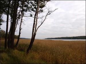 Озеро Суходольское (Ingress image)
