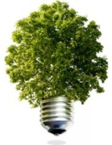 ingressimage_tree.jpg
