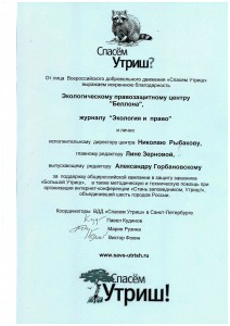 eip diploma 07