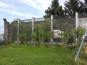 Берег был огорожен глухим трехметровым забором, а сам участок превращен в коттеджный поселок.