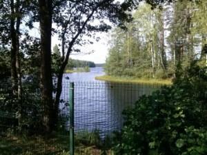 Забор элитного коттеджного поселка «Медное озеро» компании «Хонка-парк» огородил еще 900 метров общественной береговой полосы озера Медное (Меднозаводский разлив) и полностью – небольшое лесное озеро Светлое.