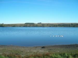 Озеро Кюльхири, Республика Чувашия. Озеро имеет статус памятника природы, особо охраняемой природной территории регионального значения.