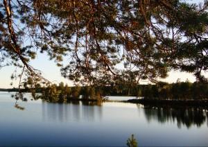 Губа Святуха Онежского озера, Карелия.