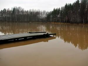 Вот так выглядит теперь озеро Темное. Два года назад в нем водилась рыба.