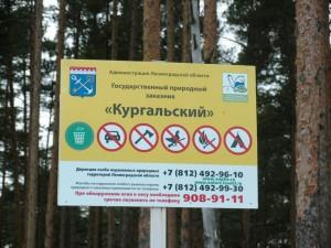 Аншлаг заказника «Кургальский».