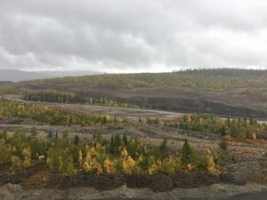 Swedish mining